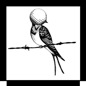 vignette_birdie_ocell